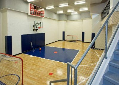 sport court in Eden Prairie Bearpath Renovation